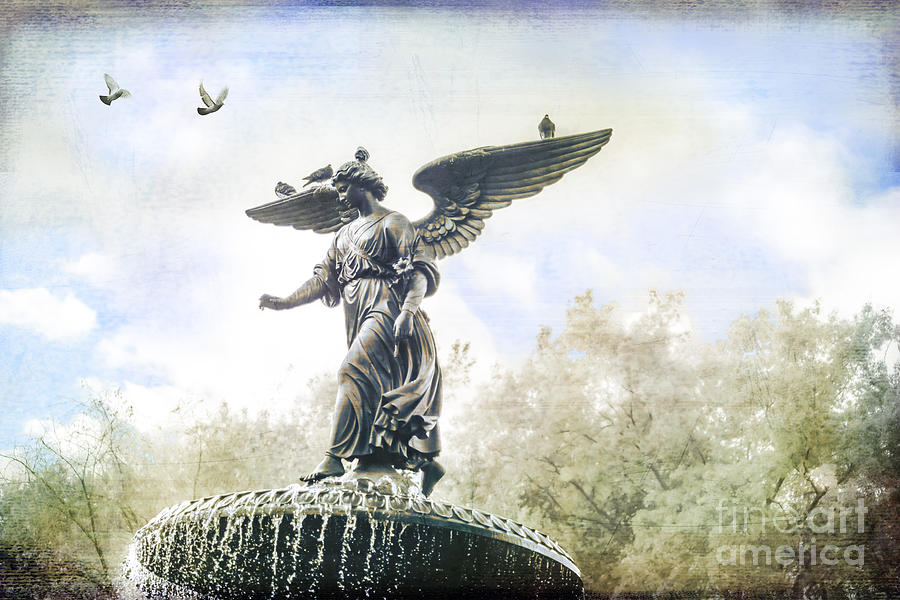 Bethesda Photograph - Bethesda Angel by Stacey Granger