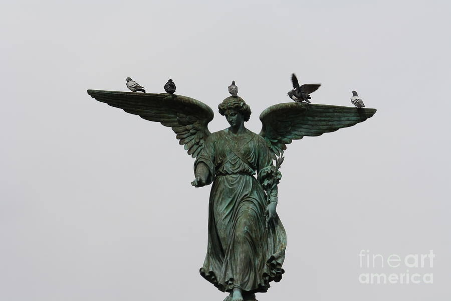 Bethesda Fountain by Wilko Van de Kamp
