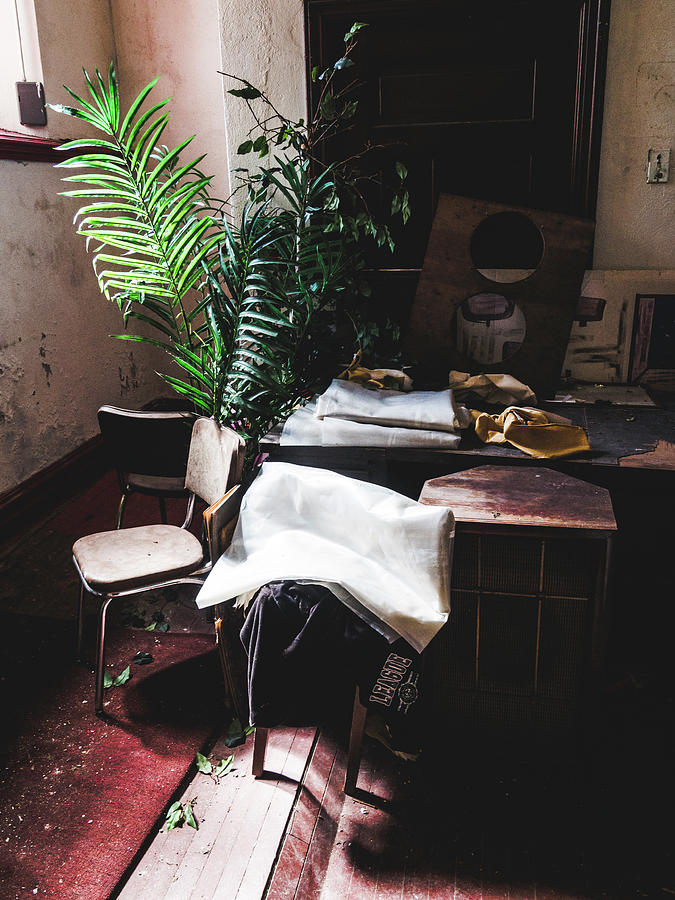 Abandoned Photograph - Better Homes And Gardens by Dylan Murphy