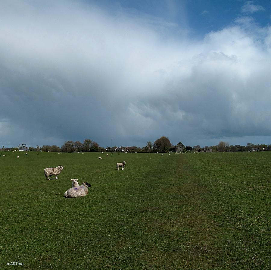 Between The Showers Photograph