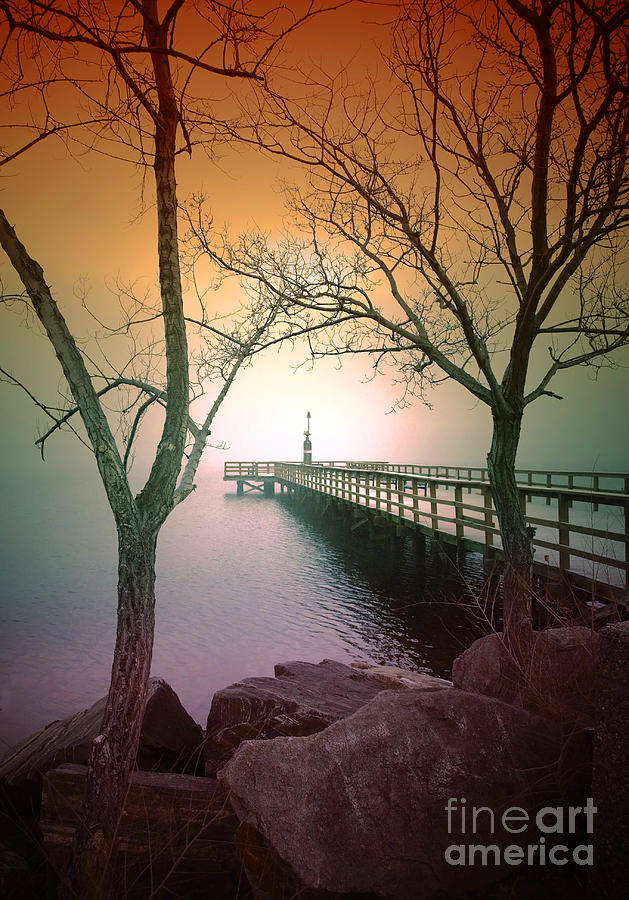 Pier Photograph - Between Two Trees by Tara Turner