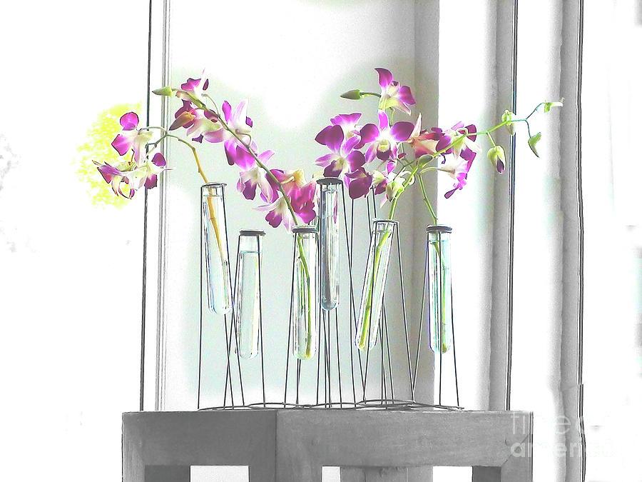 Flowers Digital Art - Beverly Buds 2 by Karen Francis