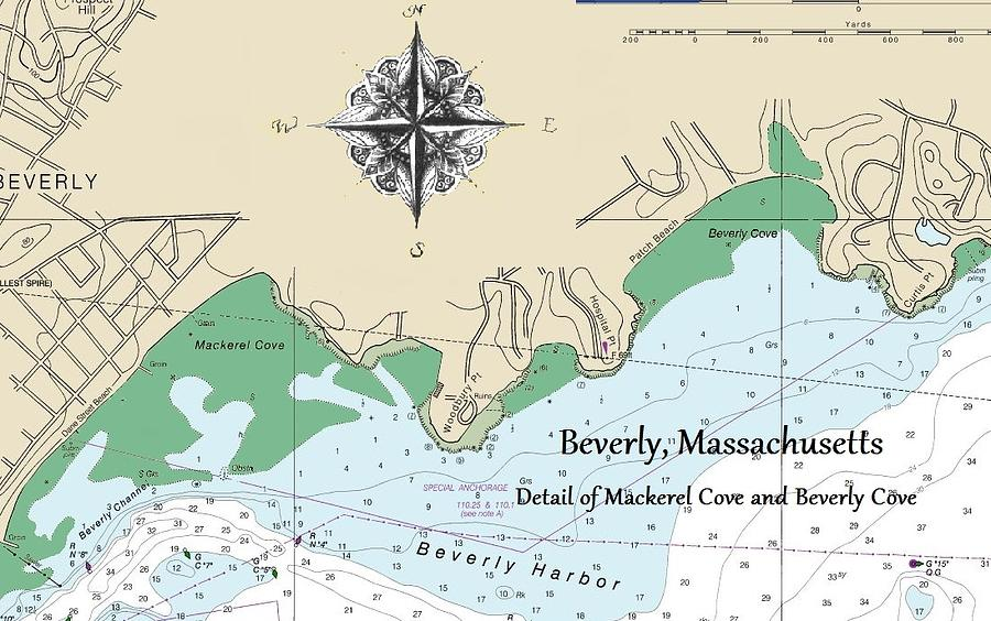 Beverly Cove nautical map by Jeannine Selig