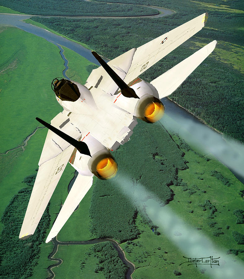 F-14 Tomcat Painting - Beware The Dove by Dieter Carlton