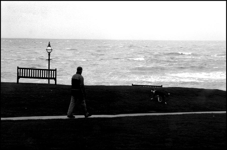 Photographer Photograph - Bexhill 18 by Jez C Self