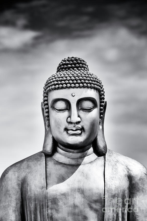 Buddha Photograph - Beyond Silence by Tim Gainey