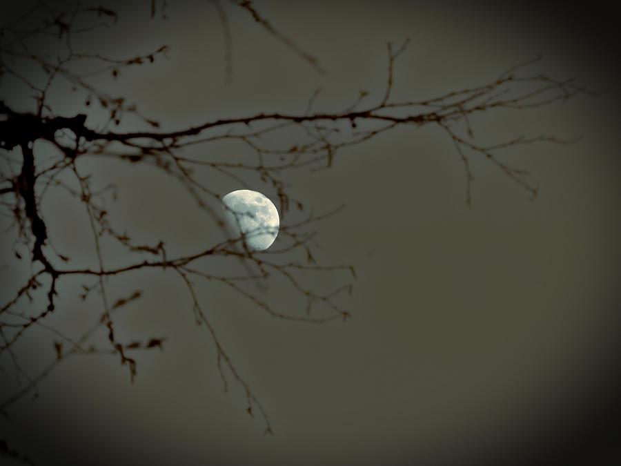 Moon Photograph - Beyond The Summer by Scott Ballingall