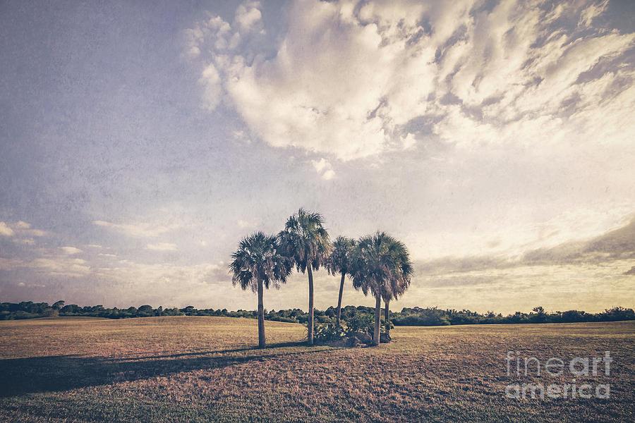 Beyond The Sundial Photograph