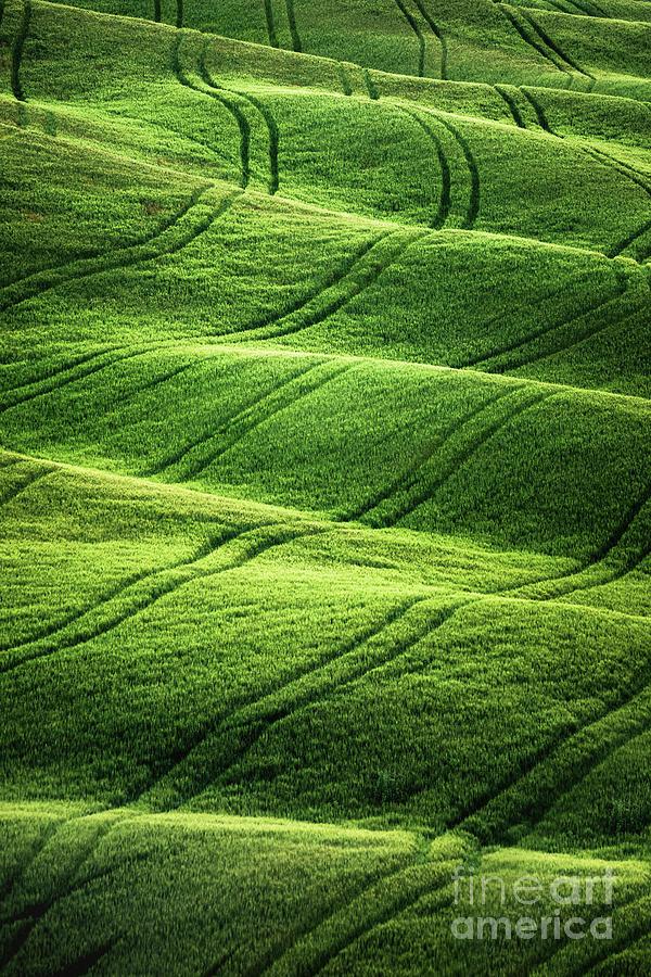 Beyong Green Waves Photograph
