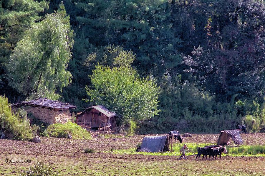 Bhutan field work by Paul Vitko