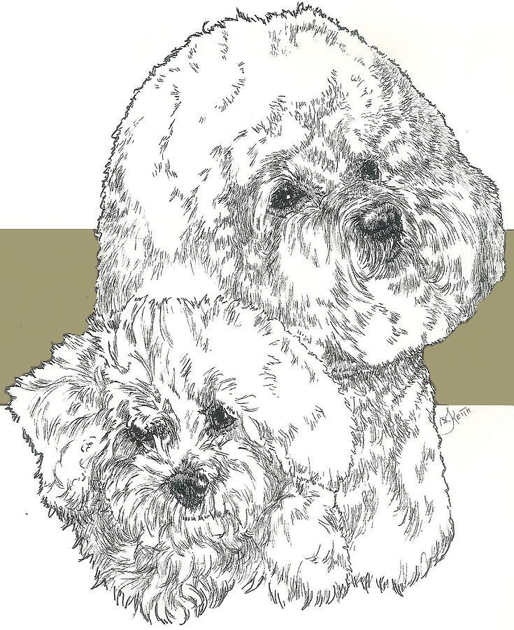 Bichon Mixed Media - Bichon Frise And Pup by Barbara Keith