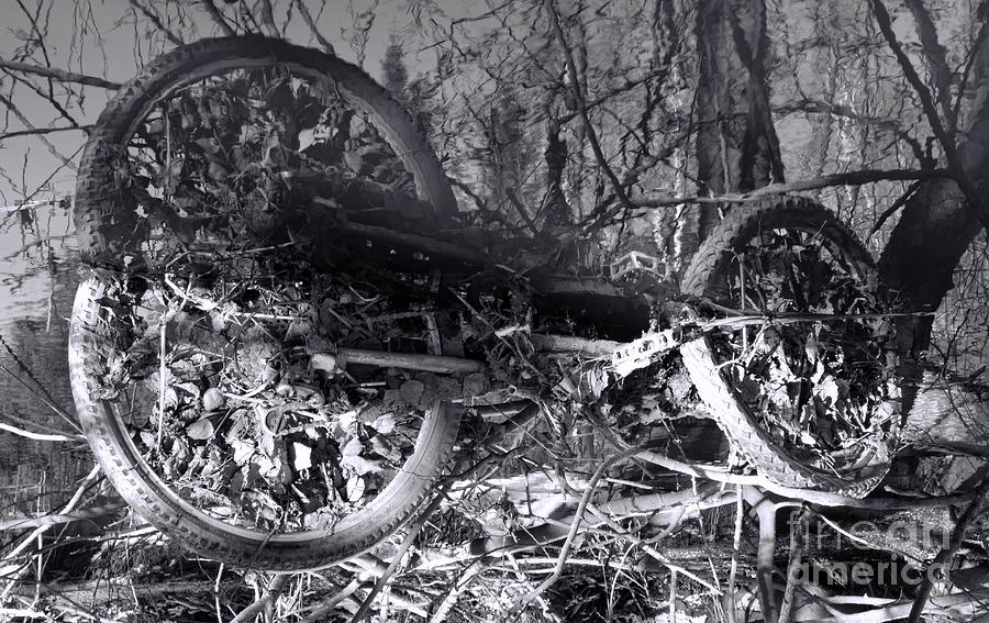 Bicycle Heave Photograph