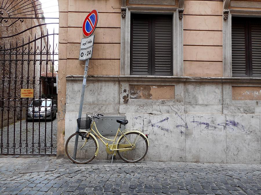 Bicycle Photograph - Bicycle Thief by Michelle Barone