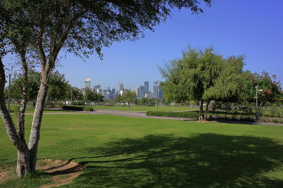 Bidda park trees and towers by Paul Cowan