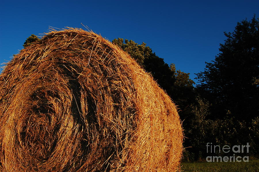 Big Bales Photograph by The Stone Age