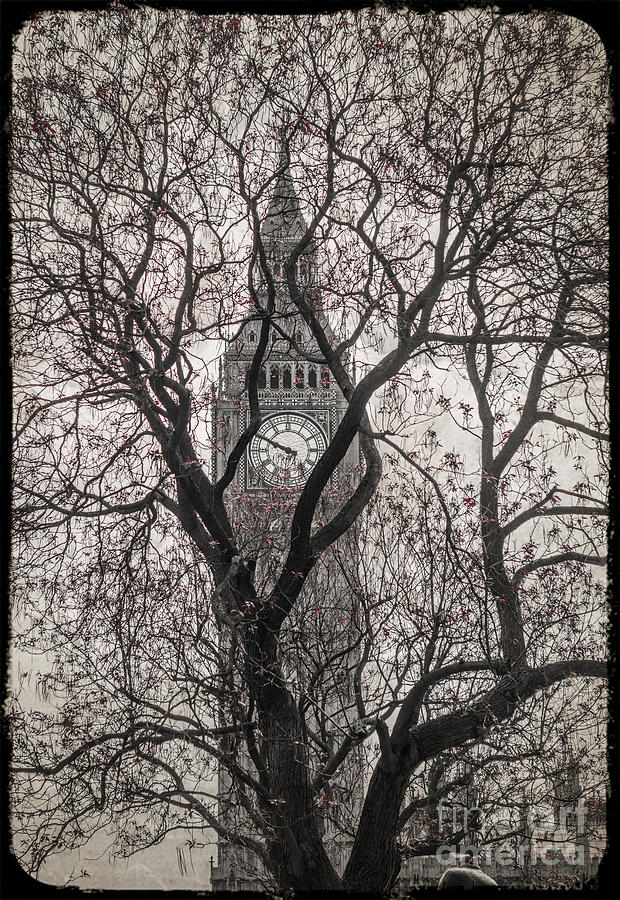 Big Ben Photograph - Big Ben from the Square by Stacey Granger