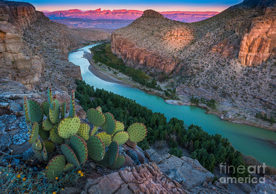 America Photograph - Big Bend Evening by Inge Johnsson