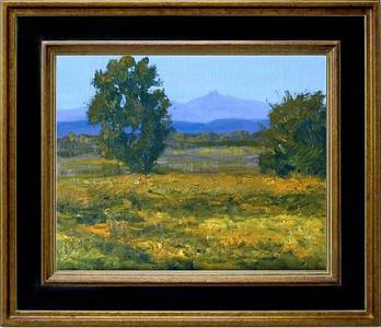 Big Bend National Park Painting - Big Bend Meadow by Graham Murray