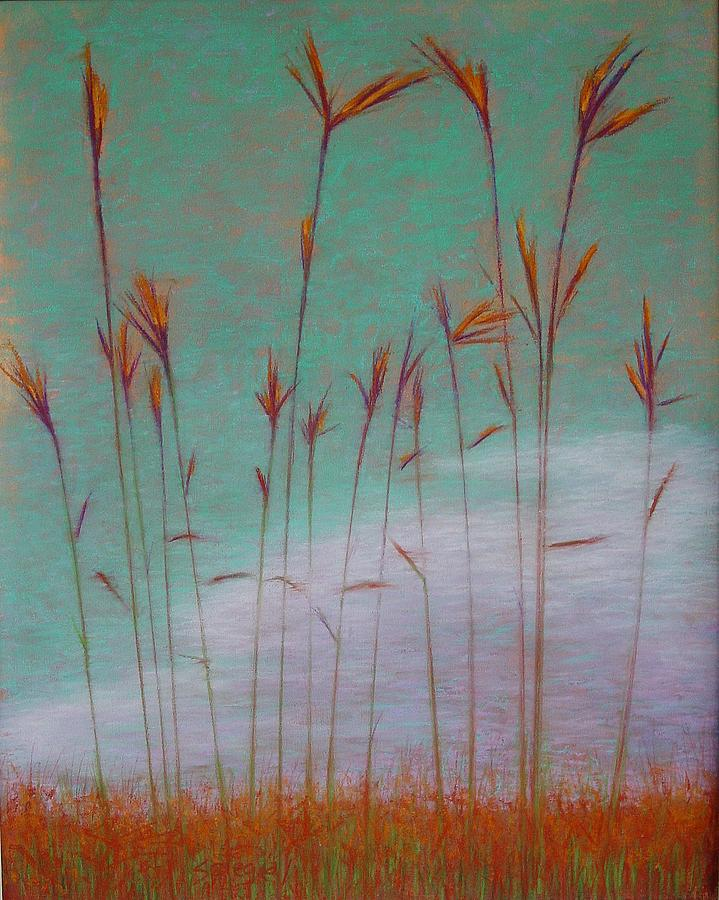 Landscape Drawing - Big Bluestem by Lorie Spiegel