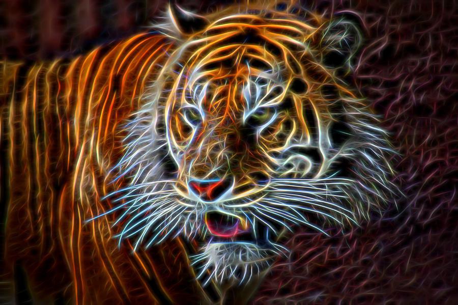 Big Cat Digital Art