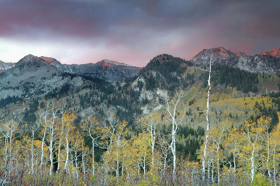 Guardsman Pass Photograph - Big Cottonwood Canyon Sunrise by Dean Hueber