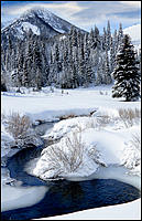 Wasatch Mountains Photograph - Big Cottonwood Creek by Douglas Pulsipher