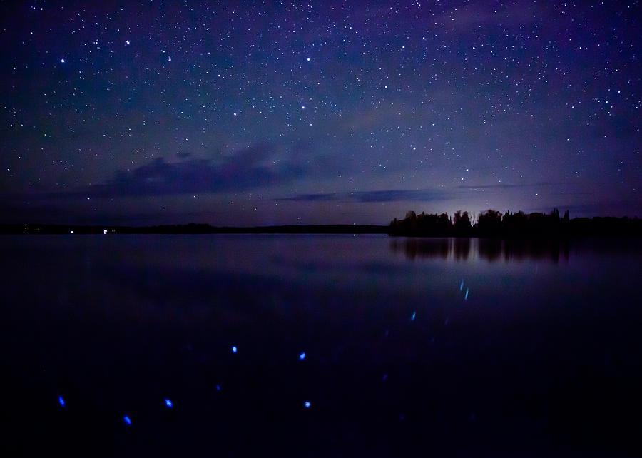 Star Photograph - Big Dipper Reflection by Adam Pender