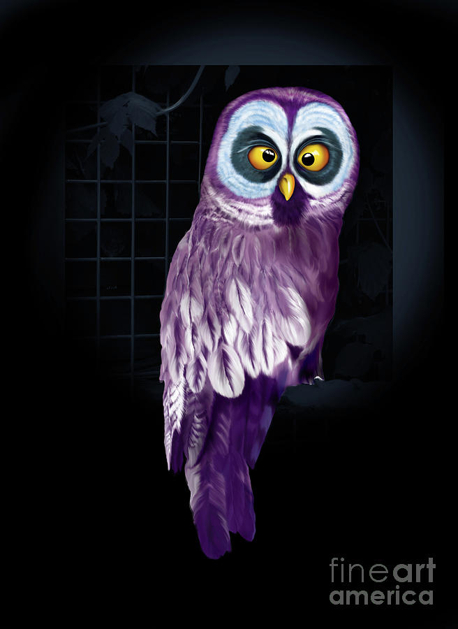 Big Eyed Owl by Mariella Wassing