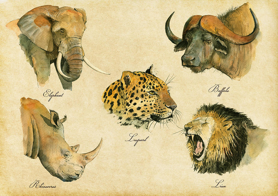 Big Five Painting - Big Five Poster by Juan  Bosco