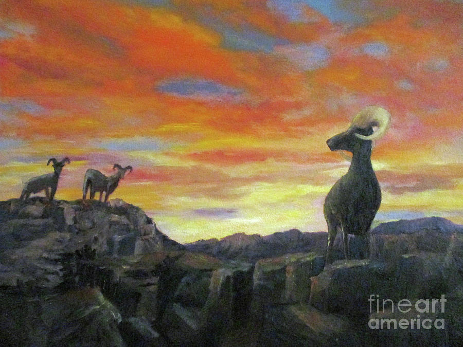 Big Horn Sheep at Sunset by Roseann Gilmore