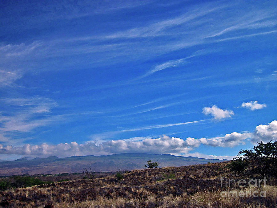 Hawaiian Photography Photograph - Big Island Landscape 3 by Bette Phelan