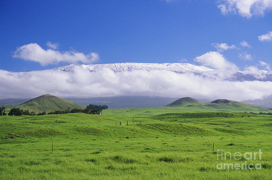 Afternoon Photograph - Big Island, Waimea by Peter French - Printscapes