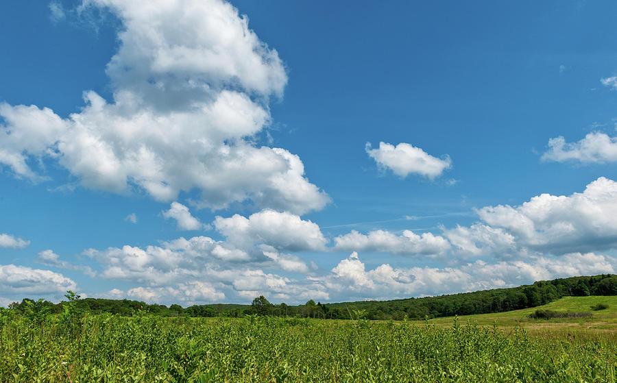 Big Meadows Big Sky 3 Photograph