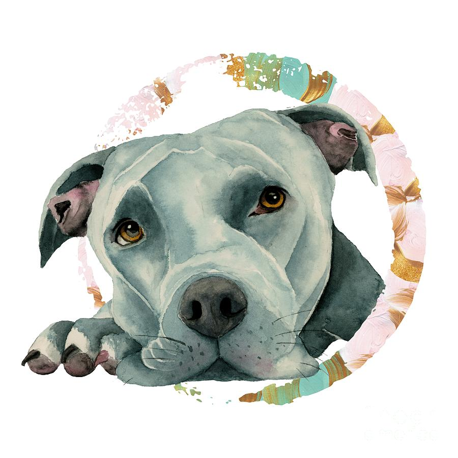 American Pit Bull Terrier Mixed Media - Big Ol Head 3 by NamiBear