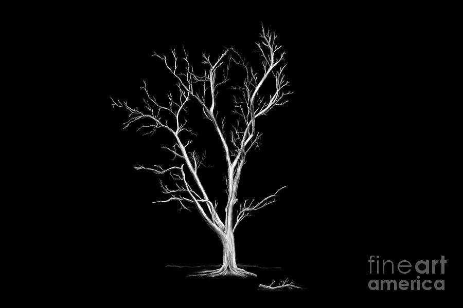 Big Old Leafless Tree by Jan Brons