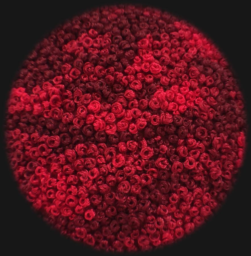 Big Red Dot by Deanna Gabiga