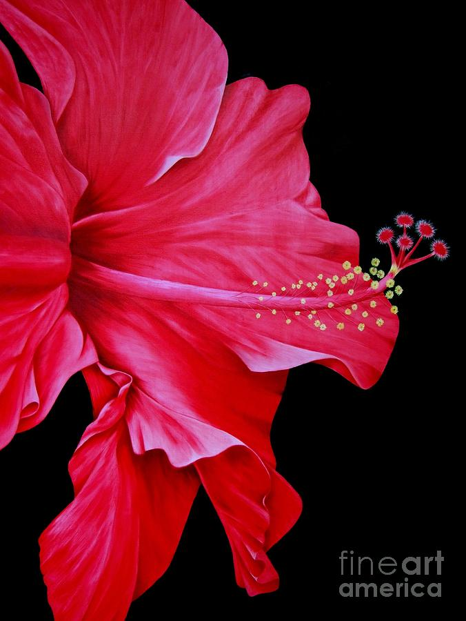 Red Flowers Painting - Big Red by Mary Deal