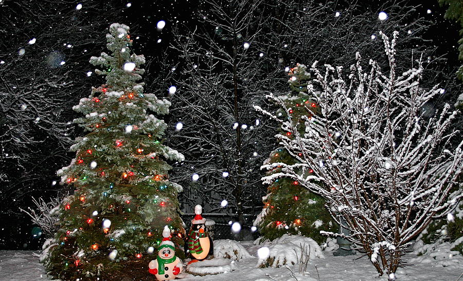 Christmas Tree Photograph - Big Snow Flakes    Holiday Card 6 by Robert Joseph