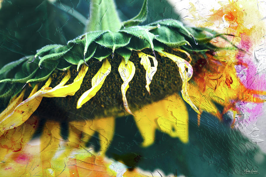 Big Sunflower Abstract by Anna Louise