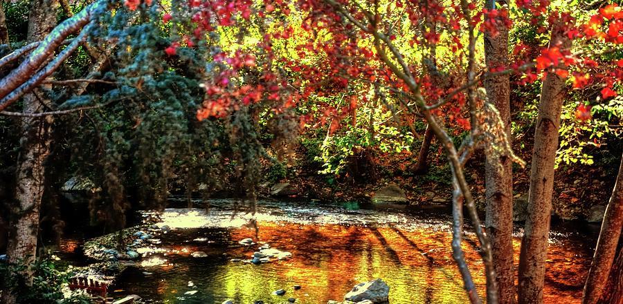 Big Sur River 19974 Photograph