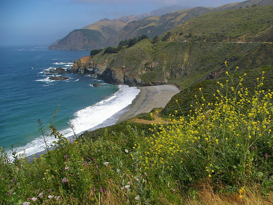 Big Sur Photograph - Big Sur Spring by Arthurpete Ellison