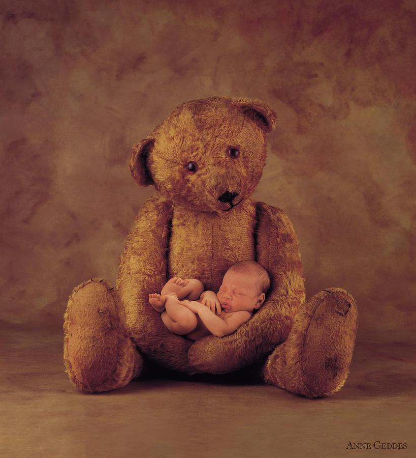 Teddy Bear Photograph - Big Ted by Anne Geddes