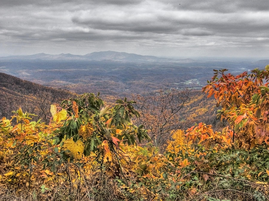 Landscape Photograph - Big Valley by Michael Edwards
