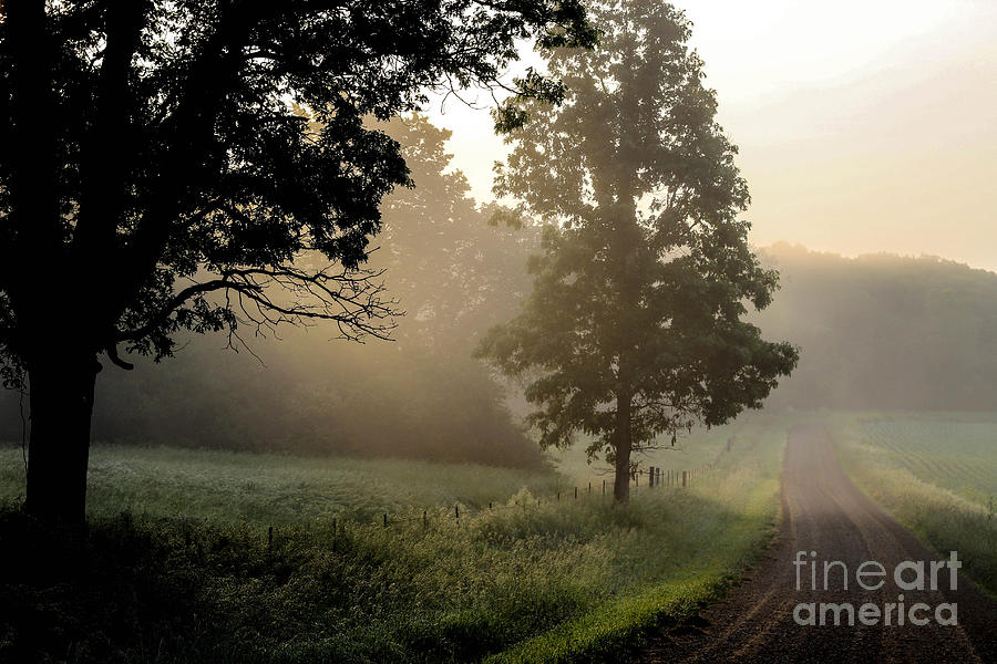 Country Photograph - Big Valley Mist  by Doug Daniels