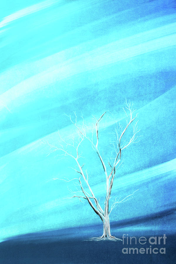 Big white leafless tree blue background by Jan Brons