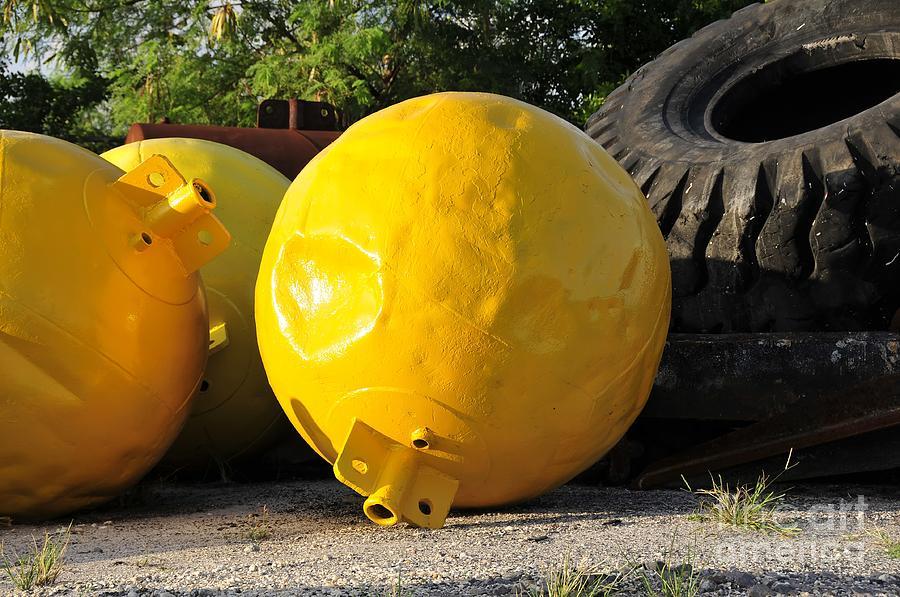 Yellow Photograph - Big Yellow Balls by David Lee Thompson