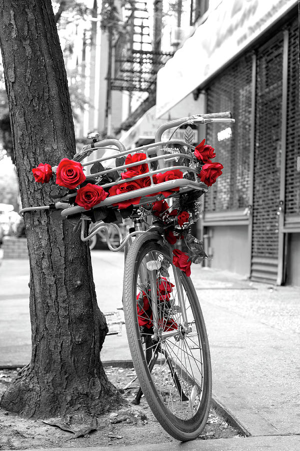 Bike Photograph - Bike With Red Roses by Lorrie Joaus