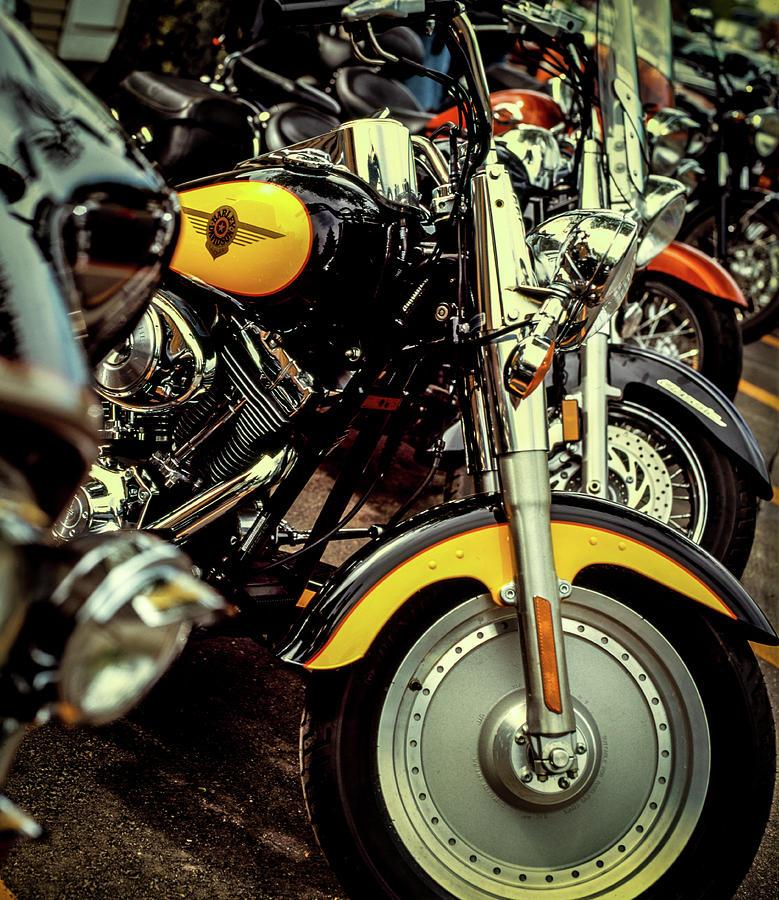Bikes in a Row by Samuel M Purvis III