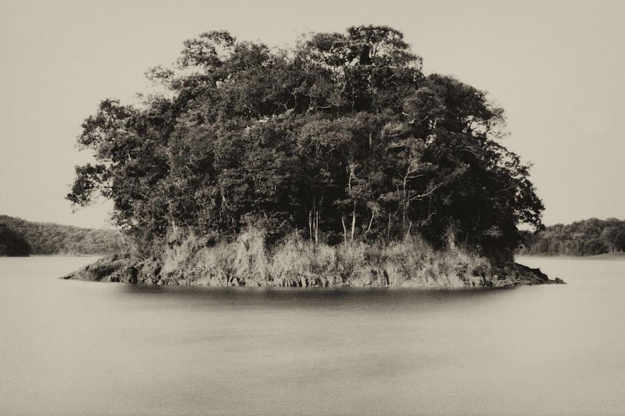 Billings Reservoir by Amarildo Correa