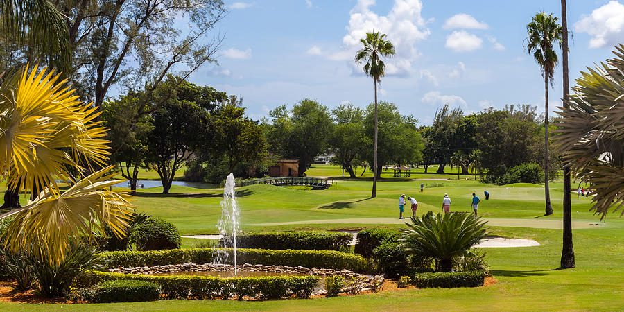 Biltmore Golf by ED GLEICHMAN